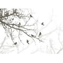 HYBH_ARTW_QZYS3_59347_花卉矢量_彩色花卉壁纸_现代壁画_花卉壁画